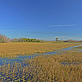 35- Grassy Waters by Joseph Keane
