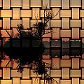 Sunset by Odon Czintos