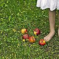 Apples by Joana Kruse