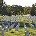 Arlington National Cemetery, Arlington by Terry Moore