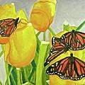 4 Butterflies by Terry Lewey