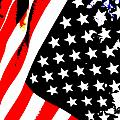 Flag Lady by J Burns