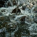 River by Odon Czintos
