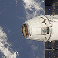 The Spacex Dragon Commercial Cargo by Stocktrek Images