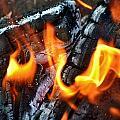 Wood Fire by Werner Lehmann