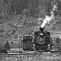 482 In Silverton - Bw by Tim Mulina