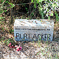 Along Big Sur by Carol Ailles