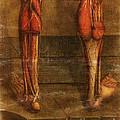 Anatomie Generale Des Visceres by Science Source