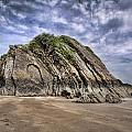 Goscar Rock Tenby by Steve Purnell
