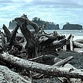 Rialto Beach La Push by Kelly Manning