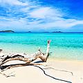 Tropical Beach Malcapuya by MotHaiBaPhoto Prints