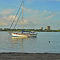51- Phil Foster Park-singer Island by Joseph Keane