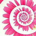5419c3-003 by Kimberlie Gerner