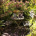 542 Cf Peaceful Garden by Chris Berry