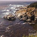 584 Pr Monterey 2 by Chris Berry