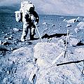 Apollo Mission 17 by Nasa