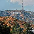 Hollywood by Carol Ailles