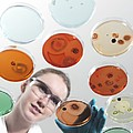 Microbiology Research by Tek Image