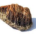 Rock From Meteorite Impact Crater by Detlev Van Ravenswaay