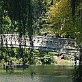 Bow Bridge by Rob Hans