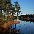 Fall At Saari-soljanen by Jouko Lehto
