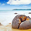 Moeraki Boulders by MotHaiBaPhoto Prints