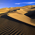 750 Foot Tall Sand Dunes Tallest by Tim Fitzharris