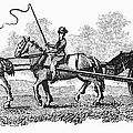 Virginia: Tobacco Culture by Granger