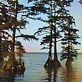 Reelfoot Lake by Bonnie Willis