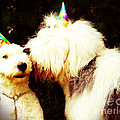 A Birthday Kiss by Alene Sirott-Cope