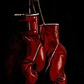 A Boxer's Passion by Laura Evans
