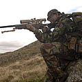 A British Soldier Armed With A Sniper by Andrew Chittock