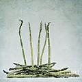 A Bunch Of Asparagus by Priska Wettstein