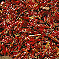 A Burlap Bag Full Of Red Hot Peppers by James P. Blair