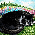 A Cat Nap In The Meadow by Elizabeth Robinette Tyndall