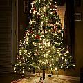 A Christmas Tree by Malania Hammer