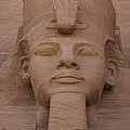 A Close View Of The Face Of Ramses IIs by Taylor S. Kennedy