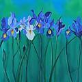 A Clutch Of Irises by Almeta LENNON