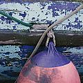 A Colorful Buoy Hangs From Ropes by George F. Mobley