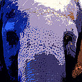 A Colorful Elephant Work Number 1 by David Lee Thompson