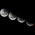 A Composite Showing Different Stages by Luis Argerich