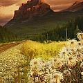 A Country Road With A Mountain In The by Kelly Redinger