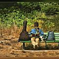 A Day On A Bench by Blake Richards