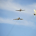 A F-22 Raptor, F-86 Sabre, P-51 Mustang by Stocktrek Images