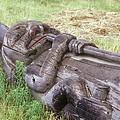A Fallen Wooden Totem Pole Lies by Stephen Sharnoff