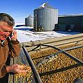 A Farmer Runs His Corn Through His Hand by Joel Sartore