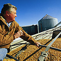 A Farmer Watches As His Corn Is Augered by Joel Sartore