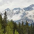 A Forest And The Rocky Mountains by Keith Levit