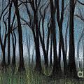 A Forest by Scott Alberts