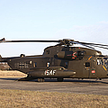 A German Ch-53gs Helicopter At Stendal by Timm Ziegenthaler